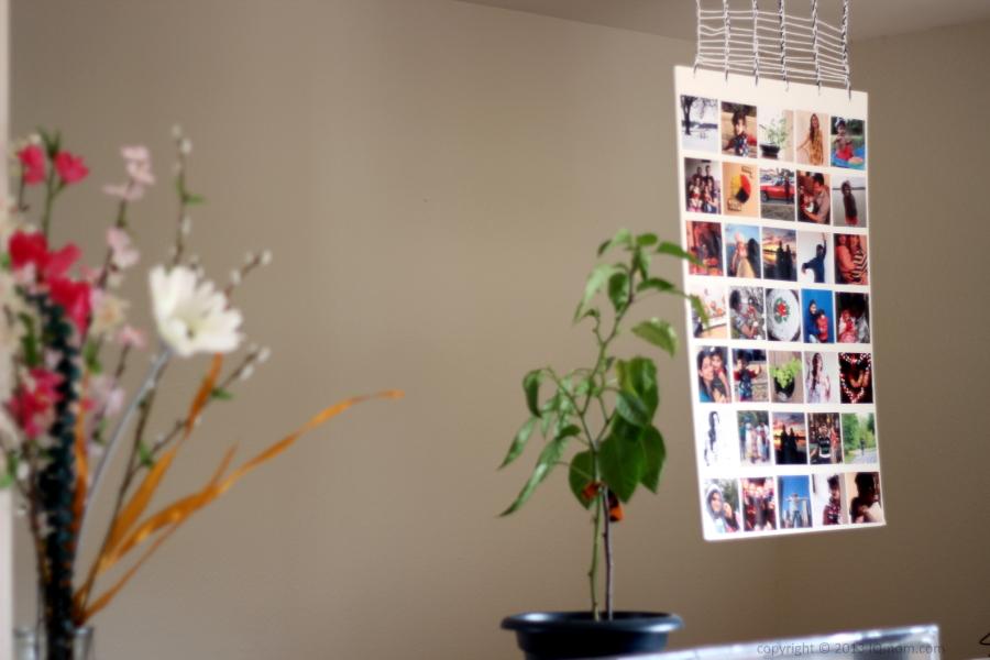 Faça você mesmo no Instagram colagem de fotos na parede suspensa