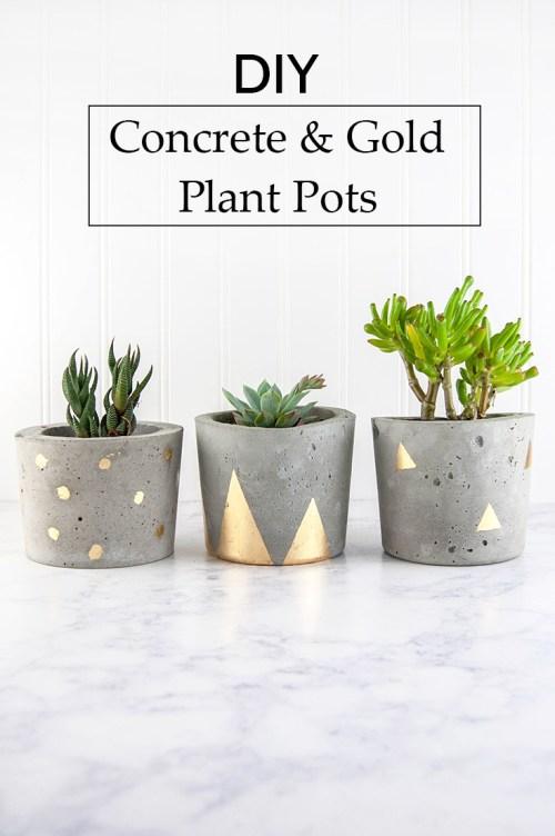 Plantadores de concreto e ouro