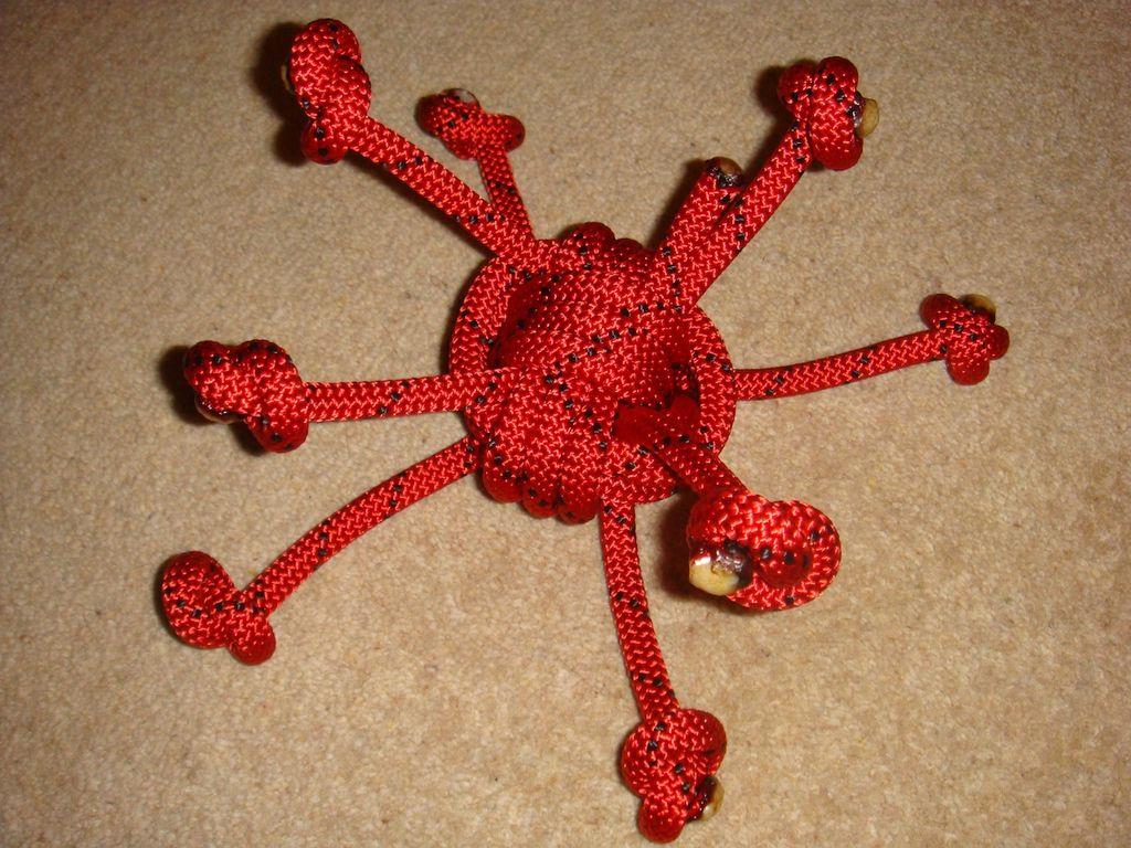 Corda da aranha vermelha