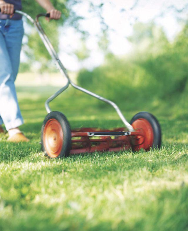 Uma pessoa empurrando um cortador de grama em um jardim.