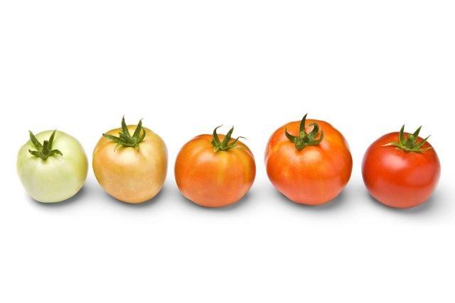 como amadurecer tomates verdes