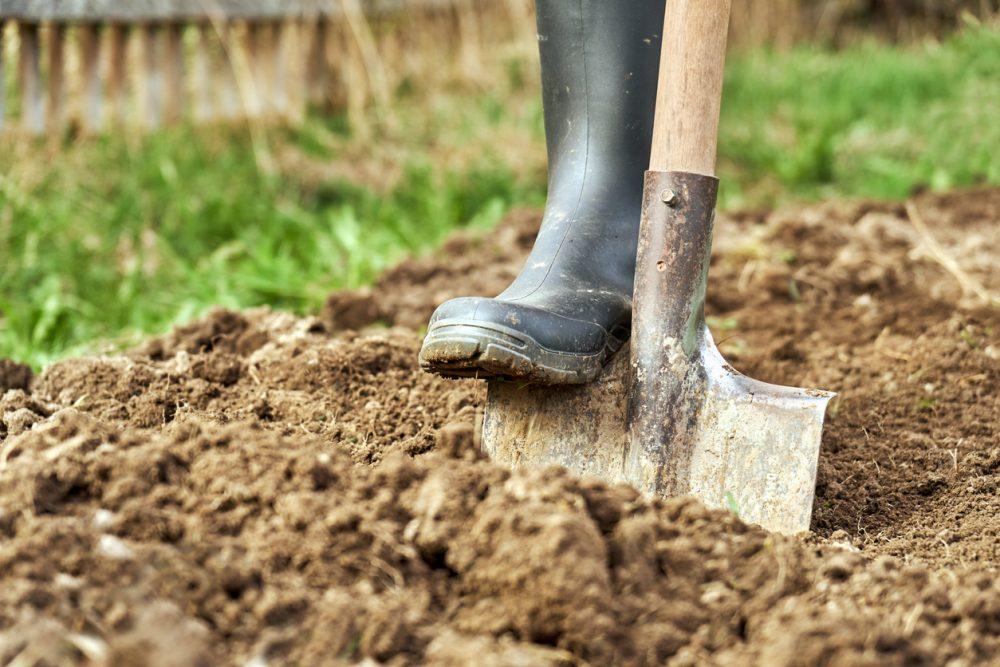 Ajude a consertar o solo argiloso