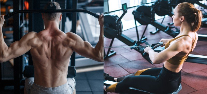 Exercícios de costas - Dr. Axe
